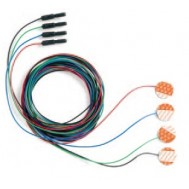 Disposable 4-Disk Electrode Set with Leads